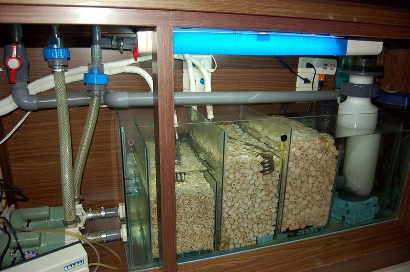 海水鱼缸底缸设计图; 海水鱼缸背滤设计图