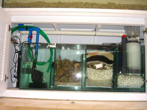 海水缸底缸设计图,底缸,海水鱼缸底缸设计图,鱼缸底缸滤材摆放图